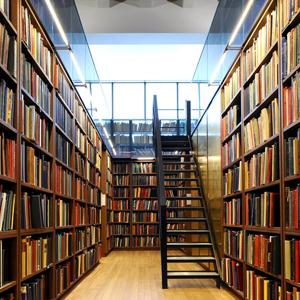 Библиотеки Балакирево