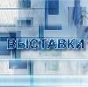 Выставки в Балакирево