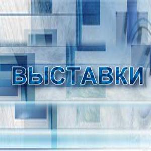 Выставки Балакирево